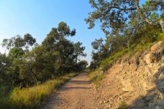 esterel-hills2
